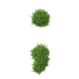 pic of punctuation marks  - Punctuation mark made of grass - JPG