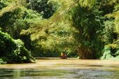 stock photo of martha  - The view of Martha Brae river with a raft in a background a popular tourist attraction in Jamaica.