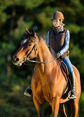 picture of bay horse  - Young woman riding a horse - JPG