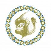 pic of beast-man  - hand drawn gorilla realistic vector eps 8 - JPG