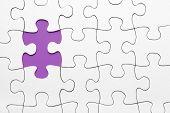 Violet Puzzle Piece Missing
