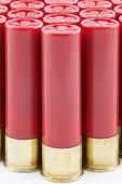 Red Shotgun Shells Lined Up