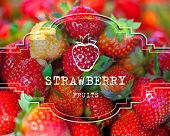eps10 vector photo realistic postcard label strawberry fruits business background
