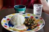 Thai spicy food stir fried chicken whit basil on rice