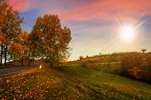 Going To Nature In Autumn At Sunset