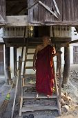 A Monk Out Of His Shed