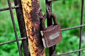 Rusty Closed Lock On A Gate