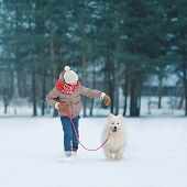 Happy Teenager Boy Running And Playing With White Samoyed Dog