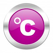 celsius violet circle chrome web icon isolated