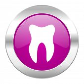 tooth violet circle chrome web icon isolated