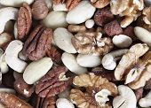 Dry nuts for snacks