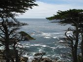 17 Mile Drive poster