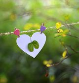 Green leaf with heart