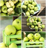 Juicy apples collage