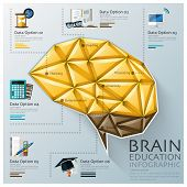 Brain Shape Three Dimension Polygon Education Infographic
