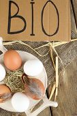 Eggs on wooden background. Organic products concept
