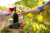 Wineglass in hand on grape plantation background