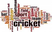 Cricket Word Cloud