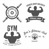 Set of vintage logo, badge, emblem or logotype elements for gym, fitness club or sport club poster
