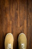 Trevelaing sneakers on wooden background