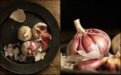 Compilation Of Images Of Fresh Raw Garlic In Moody Natural Lighting Set Up With Vintage Retro Style