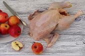 pic of crude  - Crude hen and apples process of preparation of a stuffed hen with apples - JPG