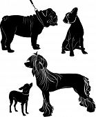 pic of animal silhouette  - vector seamless background with animal dogs silhouettes - JPG