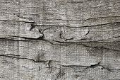 Wood And Knot Texture Background