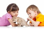 children playing with cat kitten