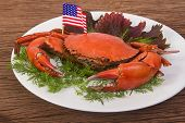 pic of cooked crab  - Cooked Whole Dungeness Crab  - JPG
