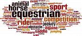 Equestrian Word Cloud