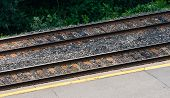 Pair Of Rail Tracks By Platform And Shrubs