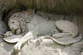 pic of mountain lion  - Statue of a dying lion in Lucerne - JPG