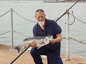 image of specimens  - A fisherman with his rod caught specimen seabass of 9lb 11oz - JPG