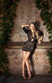 foto of little black dress  - Full Length Portrait of a Sexy Blonde Woman in Little Black Fashion Dress - JPG