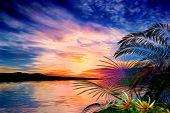 stock photo of vegetation  - 3D illustration tropical landscape at sunset where we observe a dark island and tropical vegetation - JPG