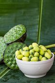 stock photo of corbel  - all Lotus seed on green banana leaf - JPG