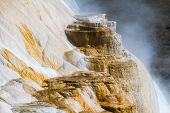 image of mammoth  - Colorful Mammoth Hot Spring Terraces in Yellowstone National Park - JPG
