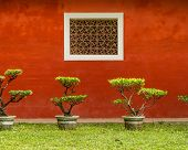 stock photo of bonsai  - Red wall of traditional Chinese house with bonsai plants - JPG