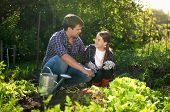 image of horticulture  - Young smiling father teaching daughter horticulture at garden - JPG