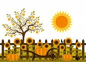 picture of bird fence  - vector pumpkins and sunflowers along picket fence - JPG