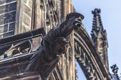 picture of gargoyles  - Gargoyle Statue on Saint Vitus Cathedral in Prague Castle Hradcany Retro toned Image - JPG