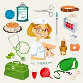 pic of vet  - Vector graphic icon set of vet and pet supplies - JPG