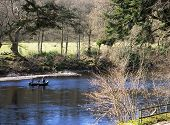 Fishing Boat On The River Tay In Scotland