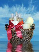 Bath Accessories Gift Basket 2
