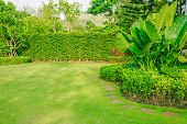 Landscape Formal, Front Yard Is Beautifully Designed Garden, Garden Design And Lawn For Background. poster