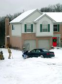 Winter Snow Digging
