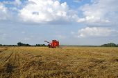 Red Combine-harvester Working On Grain Field. Harvesting Time. poster