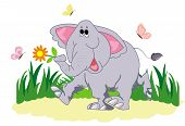 Funny Cartoon Elephant With Butterfly. The Elephant Is Walking Along The Lawn. Funny Elephant And Bu poster