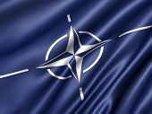 pic of panzer  - NATO flag - JPG